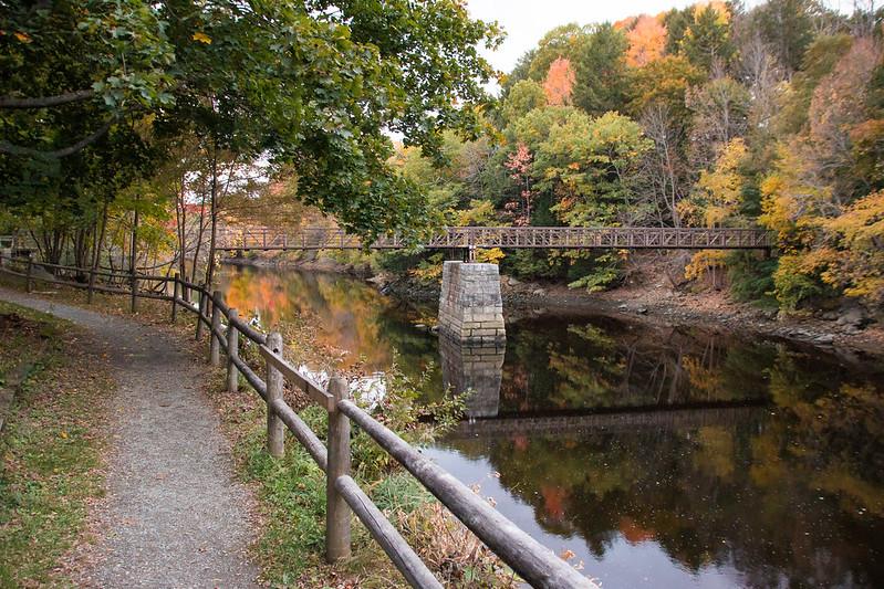 photo of walking bridge over river in autumn