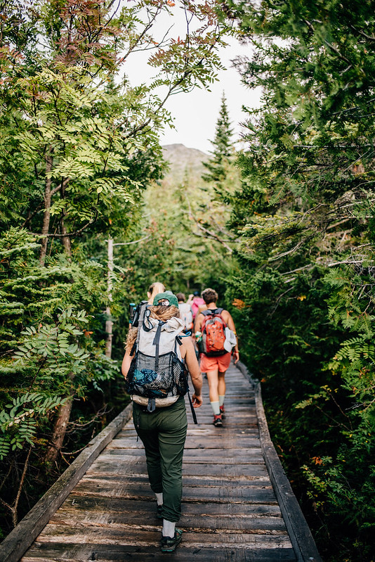 photo of people hiking along wooden platforms in the woods