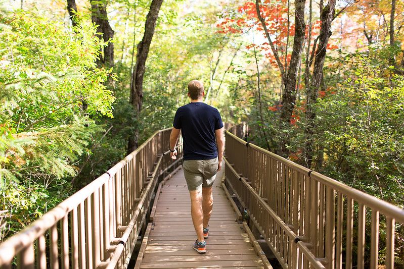 photo of man walking along orono bog walk in the bangor city forest