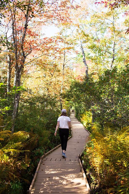 photo of woman walking down orono bog walk
