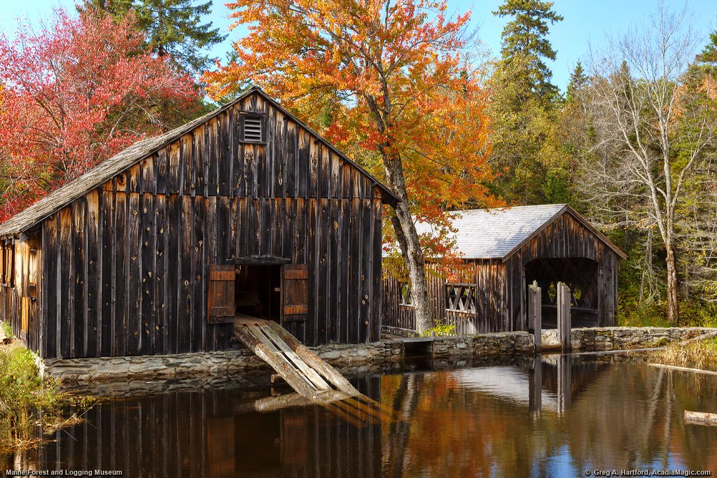 photo of old lumber mill in autumn at the maine forest and logging museum